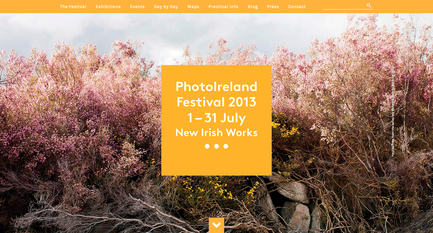 New-Irish-Works---PhotoIreland-Festival-2013