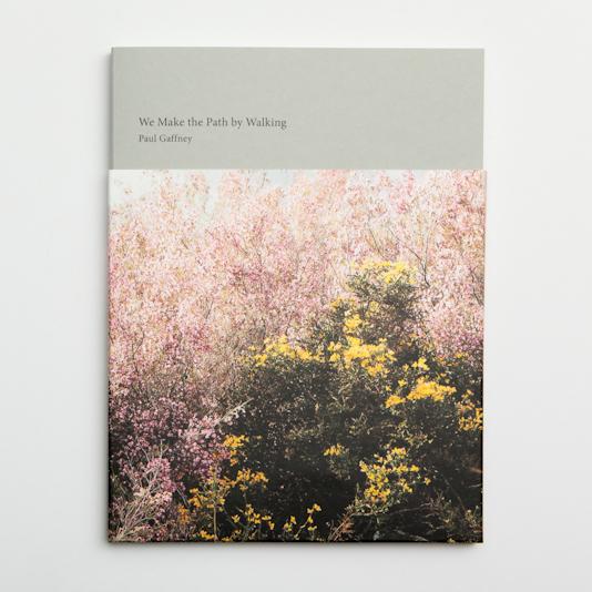 We Make the Path by Walking - Paul Gaffney