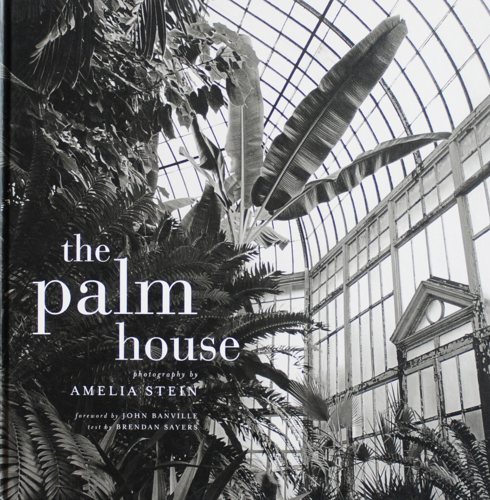 The_palm_house